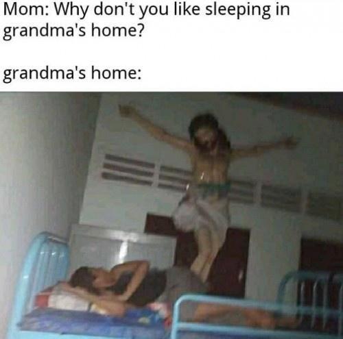 Organism - Mom: Why don't you like sleeping in grandma's home? grandma's home: