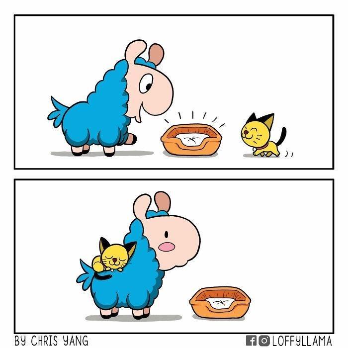Cartoon - BY CHRIS YANG HOLOFFYLLAMA