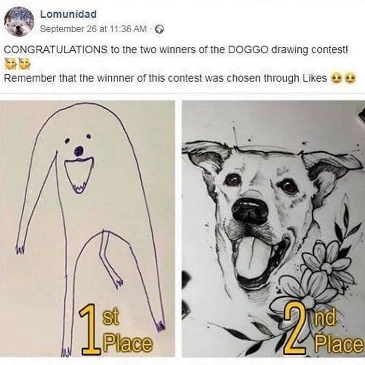 Dog - Lomunidad September 26 at 11:36 AM 6 CONGRATULATIONS to the two winners of the DOGGO drawing contest! Remember that the winnner of this contest was chosen through Likes st Place Ind. Place