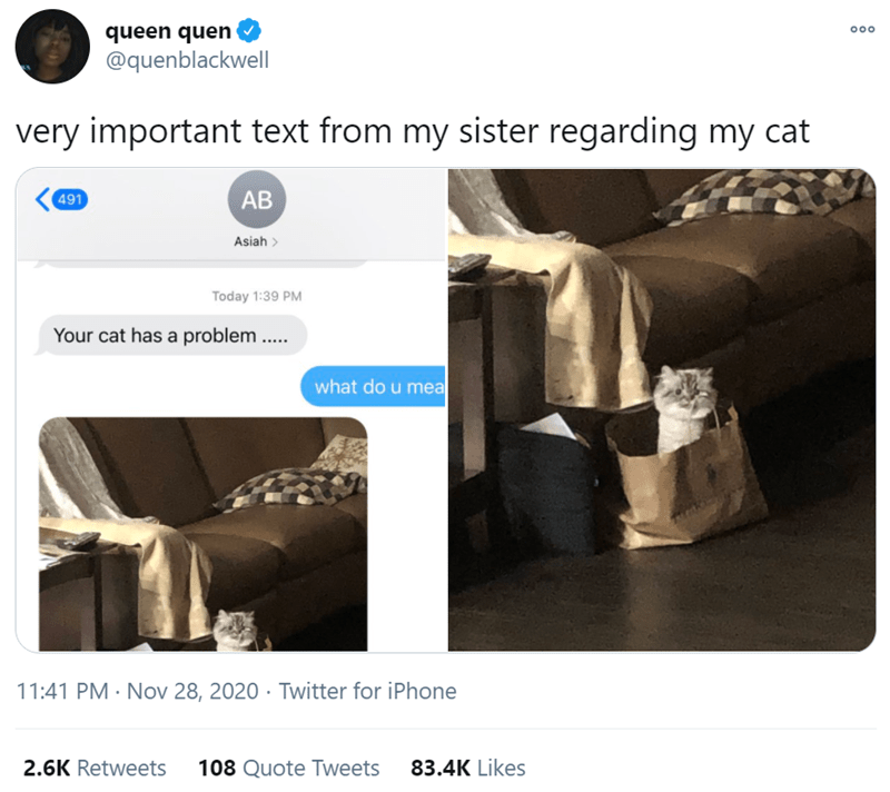 Product - queen quen @quenblackwell 000 very important text from my sister regarding my cat 491 AB Asiah  Today 1:39 PM Your cat has a problem ... what do u mea 11:41 PM · Nov 28, 2020 · Twitter for iPhone 2.6K Retweets 108 Quote Tweets 83.4K Likes
