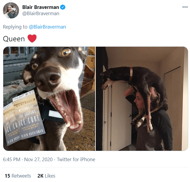 Canidae - Blair Braverman @BlairBraverman 000 Replying to @BlairBraverman Queen TONI GHT O 7! ICE CUICE CUBE 6:45 PM · Nov 27, 2020 - Twitter for iPhone 15 Retweets 2K Likes