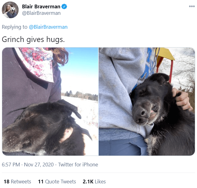Canidae - Blair Braverman 000 @BlairBraverman Replying to @BlairBraverman Grinch gives hugs. 6:57 PM · Nov 27, 2020 · Twitter for iPhone 18 Retweets 11 Quote Tweets 2.1K Likes