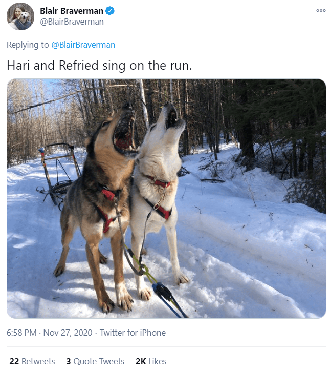 Mammal - Blair Braverman @BlairBraverman 000 Replying to @BlairBraverman Hari and Refried sing on the run. 6:58 PM · Nov 27, 2020 · Twitter for iPhone 22 Retweets 3 Quote Tweets 2K Likes