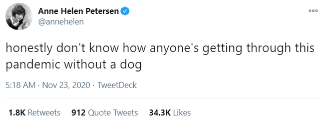 Text - Anne Helen Petersen @annehelen 000 honestly don't know how anyone's getting through this pandemic without a dog 5:18 AM - Nov 23, 2020 · TweetDeck 1.8K Retweets 912 Quote Tweets 34.3K Likes