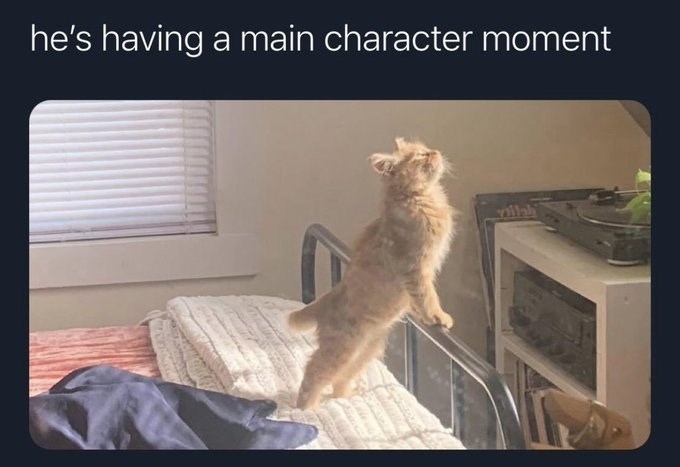 he's having a main character moment | cute orange cat standing up using a bed frame stretching toward a source of light