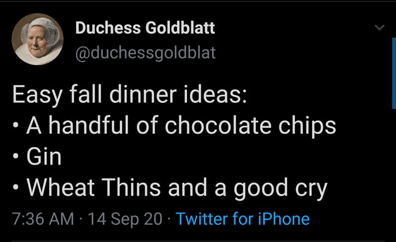 Text - Duchess Goldblatt @duchessgoldblat Easy fall dinner ideas: A handful of chocolate chips • Gin • Wheat Thins and a good cry 7:36 AM · 14 Sep 20 · Twitter for iPhone