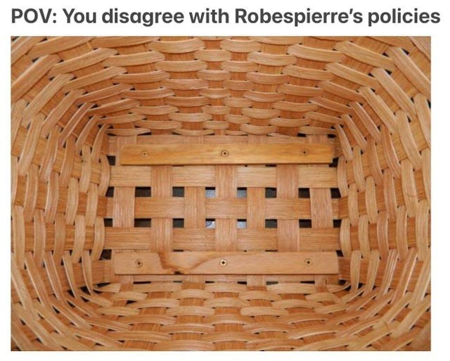 Wood - POV: You disagree with Robespierre's policies
