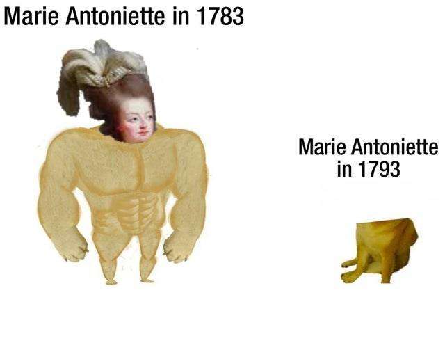 Text - Marie Antoniette in 1783 Marie Antoniette in 1793