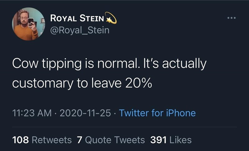 Text - ROYAL SΤΕΙΝ ... @Royal_Stein Cow tipping is normal. It's actually customary to leave 20% 11:23 AM · 2020-11-25 · Twitter for iPhone 108 Retweets 7 Quote Tweets 391 Likes