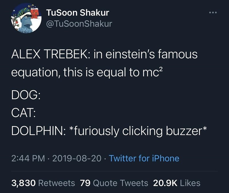 Text - TuSoon Shakur @TuSoonShakur ALEX TREBEK: in einstein's famous equation, this is equal to mc? DOG: CAT: DOLPHIN: *furiously clicking buzzer* 2:44 PM · 2019-08-20 · Twitter for iPhone 3,830 Retweets 79 Quote Tweets 20.9K Likes
