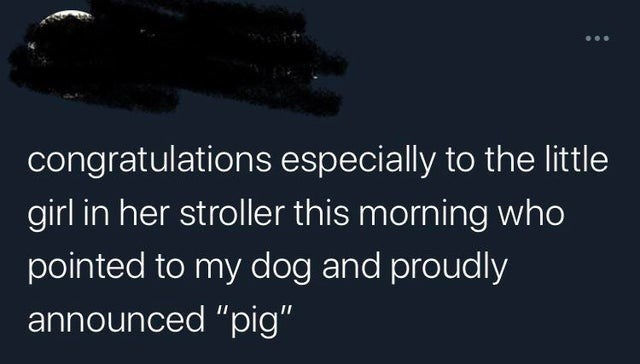 """Text - congratulations especially to the little girl in her stroller this morning who pointed to my dog and proudly announced """"pig"""""""