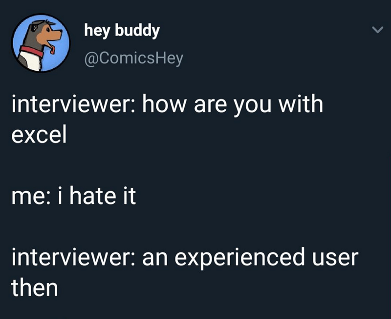 Text - hey buddy @ComicsHey interviewer: how are you with excel me: i hate it interviewer: an experienced user then
