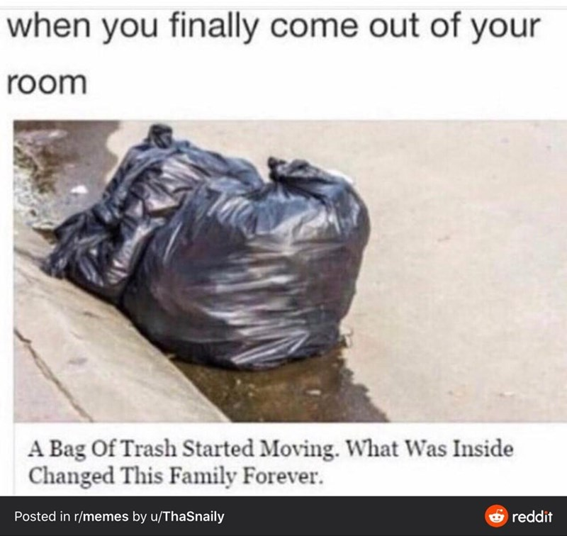 Text - when you finally come out of your room A Bag Of Trash Started Moving. What Was Inside Changed This Family Forever. Posted in r/memes by u/ThaSnaily reddit