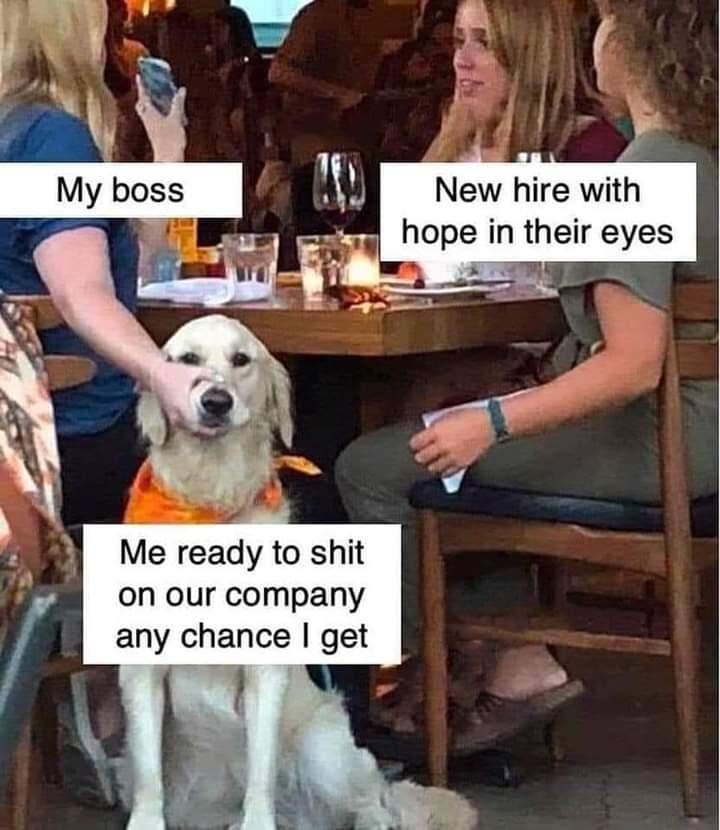 Human - My boss New hire with hope in their eyes Me ready to shit on our company any chance I get