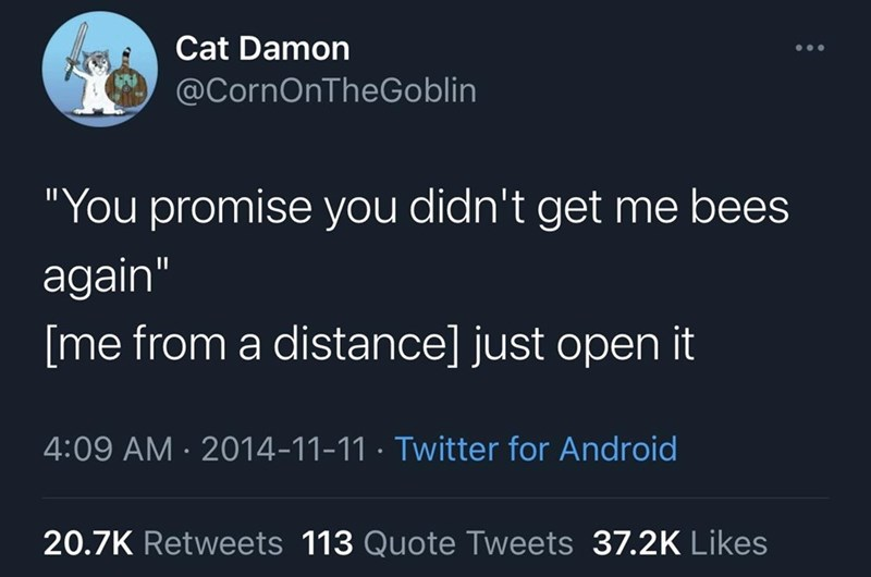 """Text - Cat Damon @CornOnTheGoblin """"You promise you didn't get me bees again"""" [me from a distance] just open it 4:09 AM · 2014-11-11 · Twitter for Android 20.7K Retweets 113 Quote Tweets 37.2K Likes"""