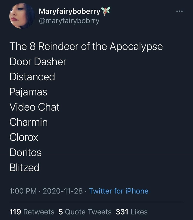 Text - Maryfairyboberry @maryfairybobrry The 8 Reindeer of the Apocalypse Door Dasher Distanced Pajamas Video Chat Charmin Clorox Doritos Blitzed 1:00 PM · 2020-11-28 · Twitter for iPhone 119 Retweets 5 Quote Tweets 331 Likes