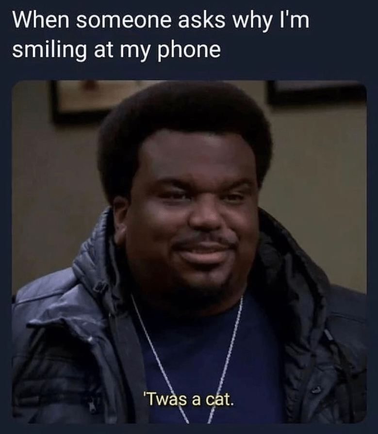 funny memes When someone asks why I'm smiling at my phone 'twas a cat