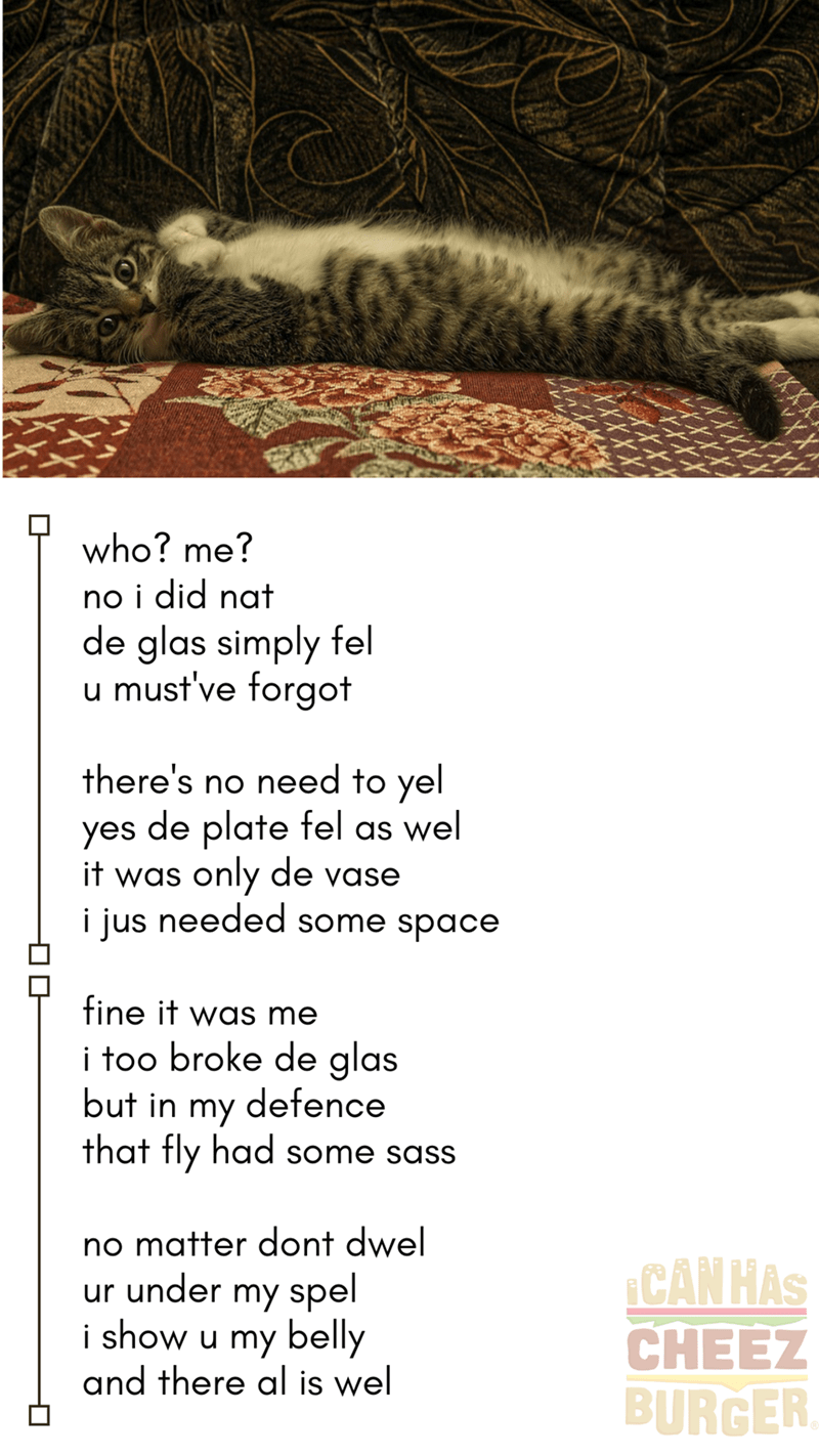 who? me? no i did nat de glas simply fel u must've forgot there's no need to yel yes de plate fel as wel it was only de vase i jus needed some space fine it was me i too broke de glas but in my defence that fly had some sass small kitten lying on its back