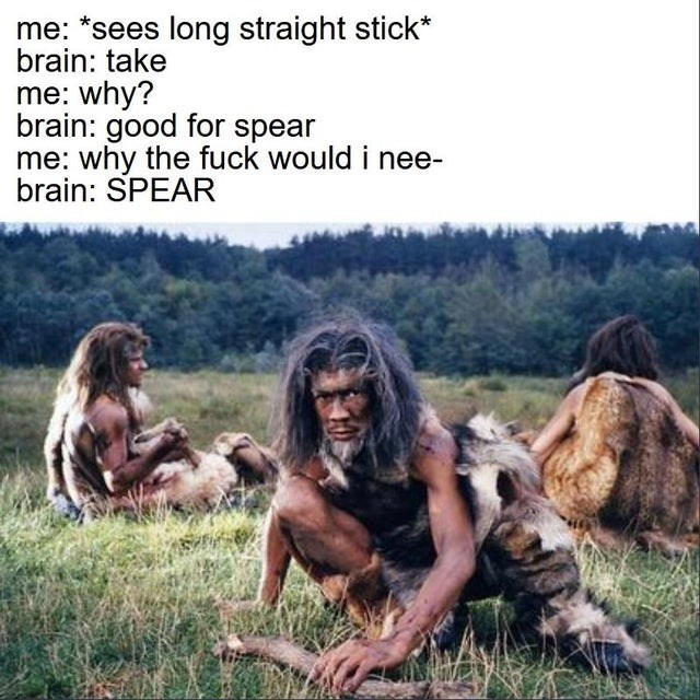Human - me: *sees long straight stick* brain: take me: why? brain: good for spear me: why the fuck would i nee- brain: SPEAR