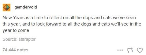 Text - gemdervoid New Years is a time to reflect on all the dogs and cats we've seen this year, and to look forward to all the dogs and cats we'll see in the year to come Source: staraptor 74,444 notes