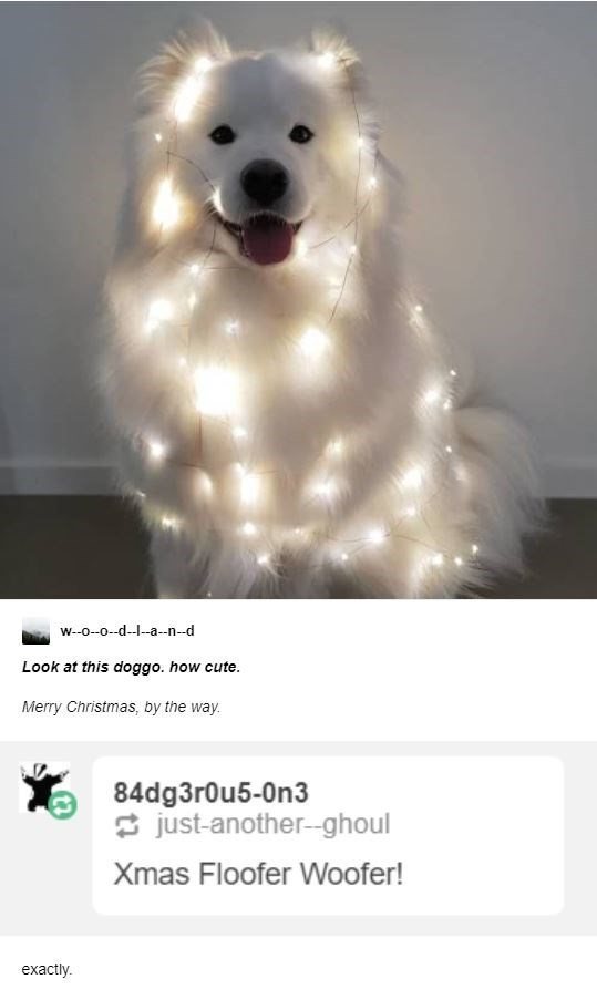 Dog breed - w--0-0--d---a--n--d Look at this doggo. how cute. Merry Christmas, by the way. 84dg3r0u5-0n3 * just-another--ghoul Xmas Floofer Woofer! exactly.