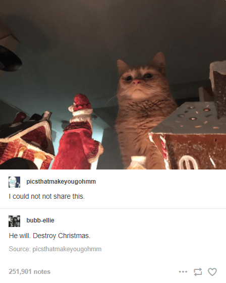 Organism - picsthatmakeyougohmm I could not not share this. bubb-ellie He will. Destroy Christmas. Source: picsthatmakeyougohmm 251,901 notes ...