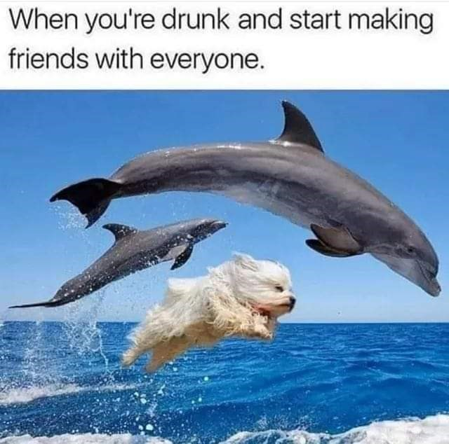Text - Body of water - When you're drunk and start making friends with everyone.