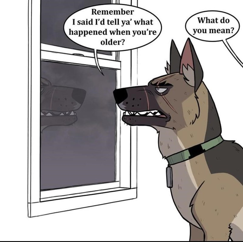 Dog breed - Remember What do I said I'd tell ya' what happened when you're older? you mean? %3D