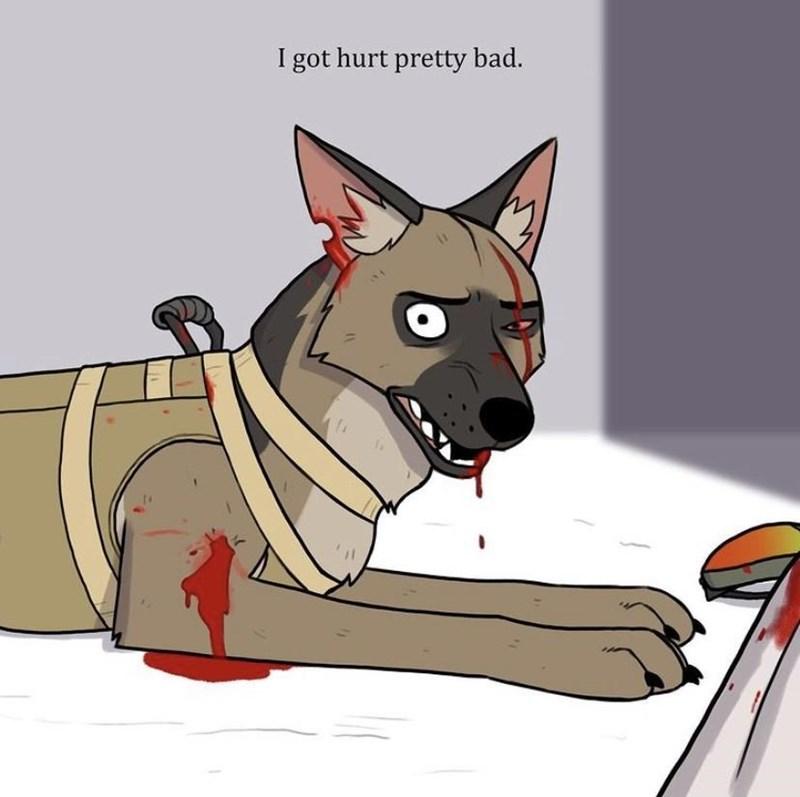 Dog breed - I got hurt pretty bad.