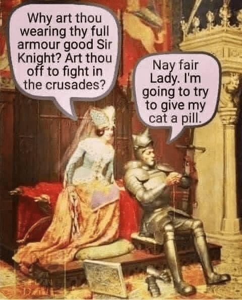 Human - Why art thou wearing thy full armour good Sir Knight? Art thou off to fight in the crusades? Nay fair Lady. I'm going to try to give my cat a pill.
