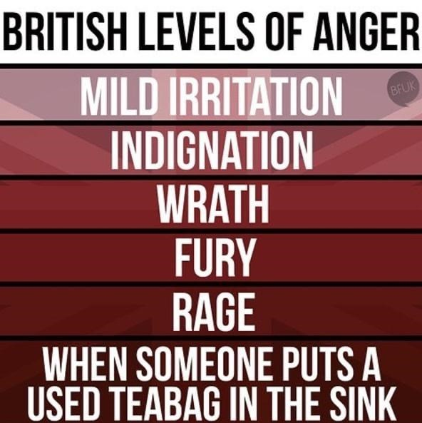 Text - BRITISH LEVELS OF ANGER MILD IRRITATION INDIGNATION WRATH FURY RAGE WHEN SOMEONE PUTS A USED TEABAG IN THE SINK BFUK