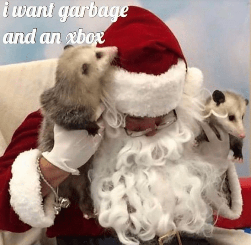 funny memes, memes, christmas, xbox | possums asking Santa Claus for garbage and an xbox for Christmas