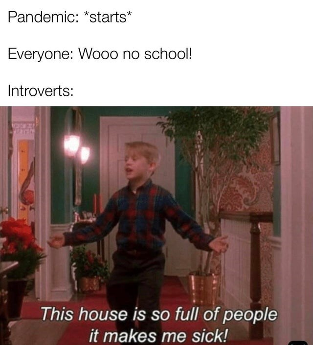 Flowerpot - Pandemic: *starts* Everyone: Wo0o no school! Introverts: This house is so full of people it makes me sick!