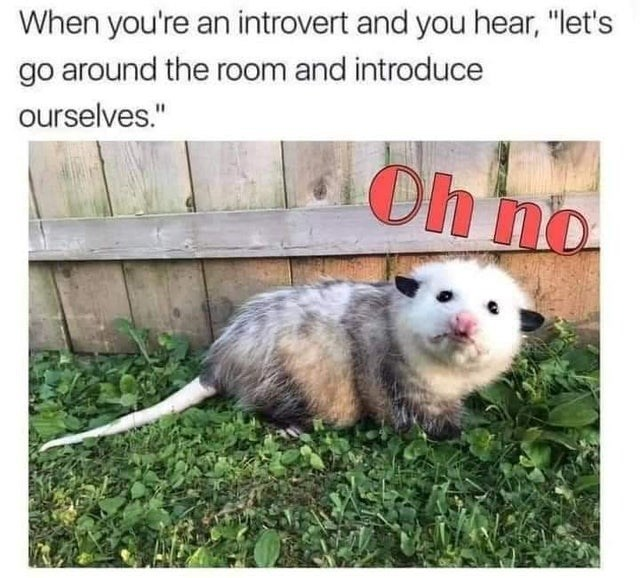 """Skin - When you're an introvert and you hear, """"let's go around the room and introduce ourselves."""" Oh no"""