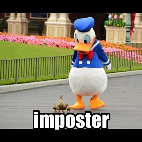 cute pic of a person Disney World actor in a Donald Duck costume walking behind a real duck and her ducklings | imposter