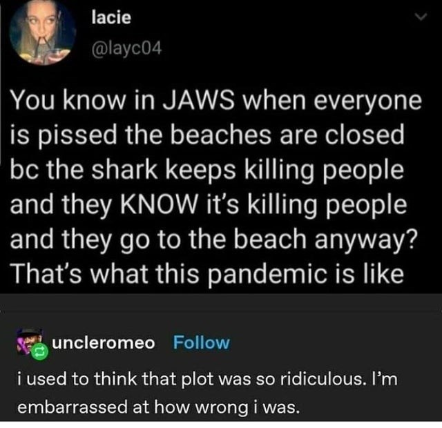 Text - lacie @layc04 You know in JAWS when everyone is pissed the beaches are closed bc the shark keeps killing people and they KNOW it's killing people and they go to the beach anyway? That's what this pandemic is like uncleromeo Follow i used to think that plot was so ridiculous. I'm embarrassed at how wrong i was.