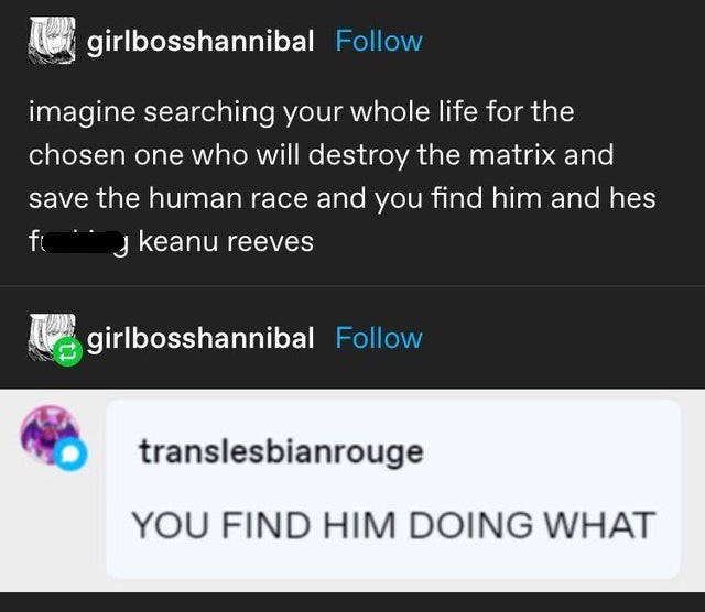 Text - girlbosshannibal Follow imagine searching your whole life for the chosen one who will destroy the matrix and save the human race and you find him and hes fo   keanu reeves girlbosshannibal Follow translesbianrouge YOU FIND HIM DOING WHAT