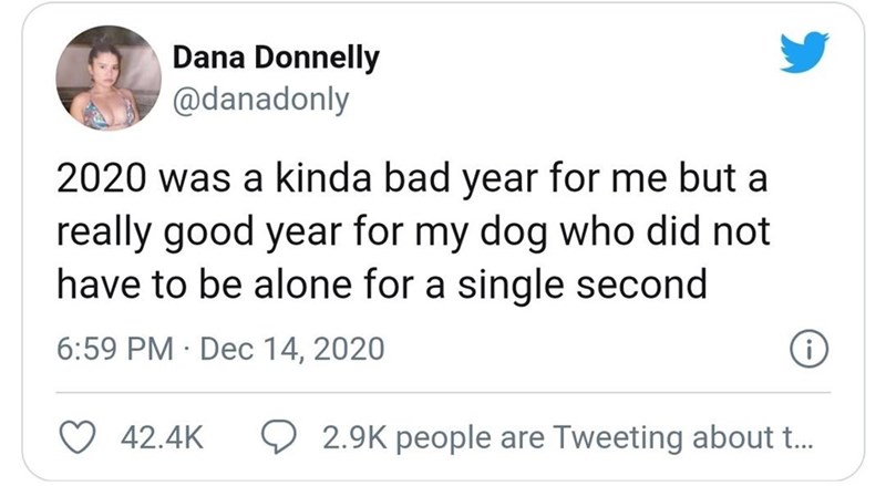 Text - Dana Donnelly @danadonly 2020 was a kinda bad year for me but a really good year for my dog who did not have to be alone for a single second 6:59 PM · Dec 14, 2020 42.4K 2.9K people are Tweeting about t.