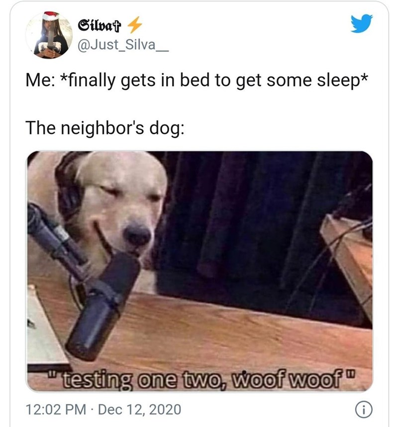 "Product - Silvat - @Just_Silva_ Me: *finally gets in bed to get some sleep* The neighbor's dog: testing one two, woof woof"" 12:02 PM · Dec 12, 2020"