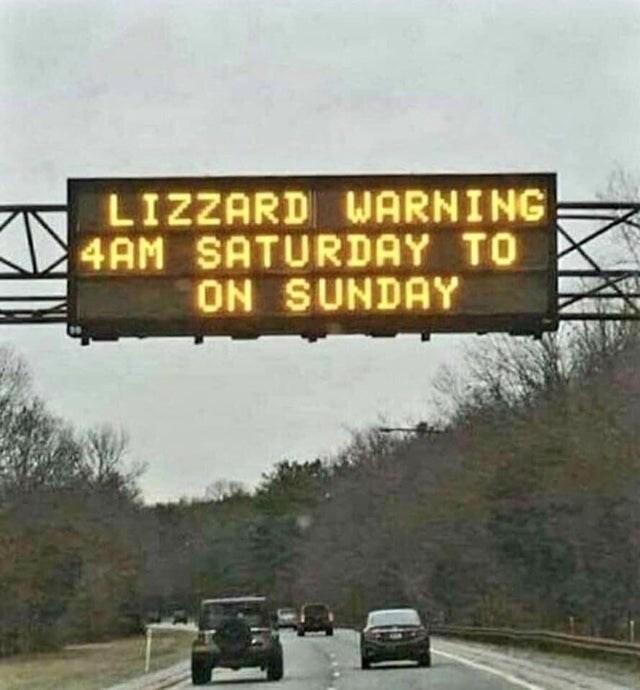 Motor vehicle - LIZZARD WARNING 4AM SATURDAY TO ON SUNDAY