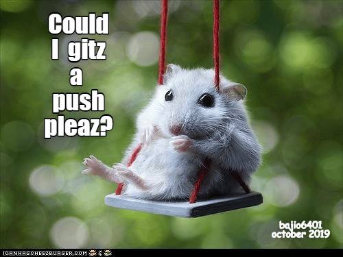 Could I get a push please | hamster swinging on a tiny swing