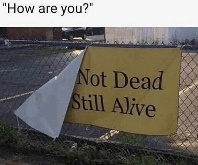 """Text - Property - """"How are you?"""" Not Dead Still Alive"""