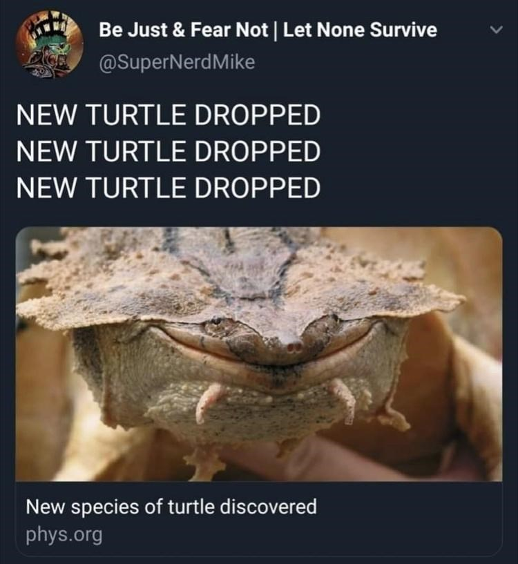Organism - Be Just & Fear Not | Let None Survive @SuperNerdMike NEW TURTLE DROPPED NEW TURTLE DROPPED NEW TURTLE DROPPED New species of turtle discovered phys.org