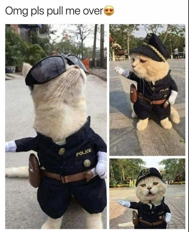 Textile - Omg pls pull me overe POLICE POLICE