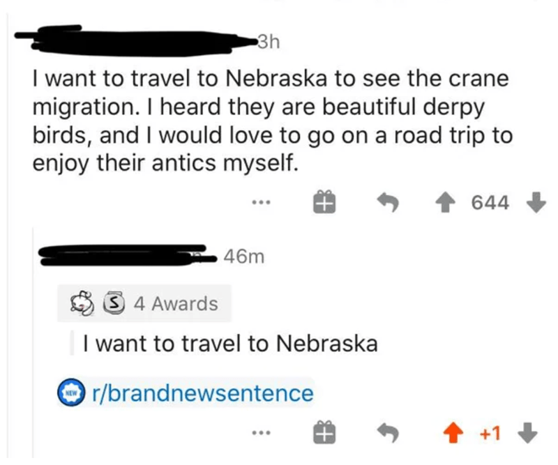 Text - 3h I want to travel to Nebraska to see the crane migration. I heard they are beautiful derpy birds, and I would love to go on a road trip to enjoy their antics myself. 644 46m 3 4 Awards I want to travel to Nebraska r/brandnewsentence 1 +1 +
