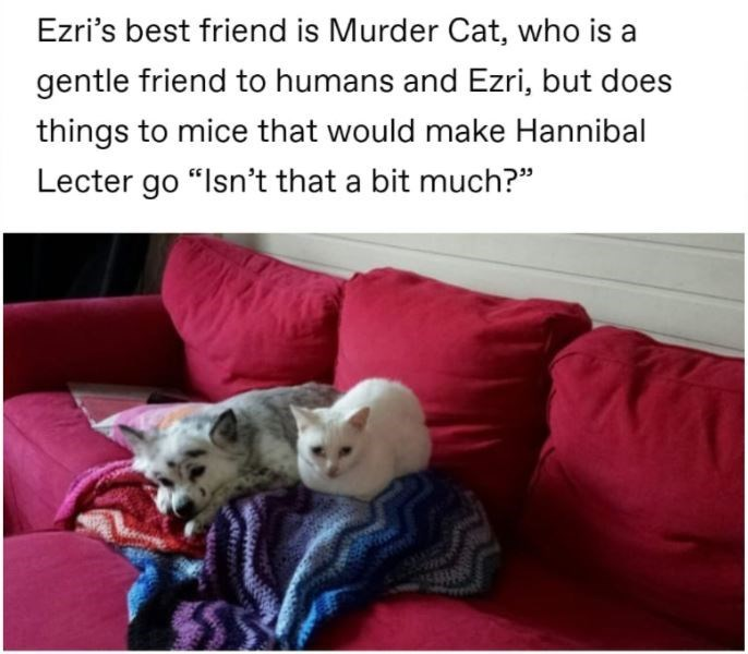 """Carnivore - Ezri's best friend is Murder Cat, who is a gentle friend to humans and Ezri, but does things to mice that would make Hannibal Lecter go """"Isn't that a bit much?"""""""