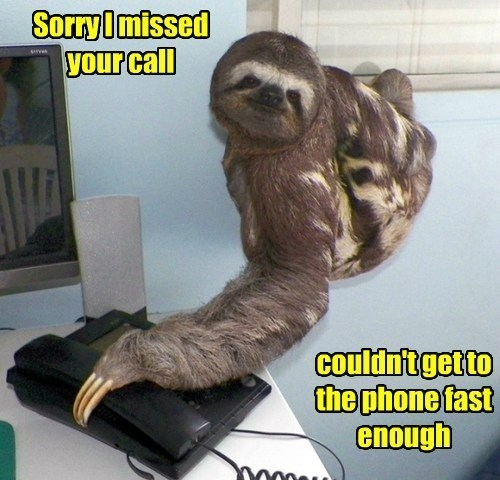 Sorry I missed your call couldn't get to the phone fast enough | sloth reaching for a phone receiver