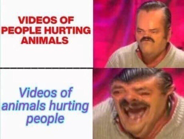 Funny meme about how videos of animals hurting humans are funny, but videos of humans hurting animals suck