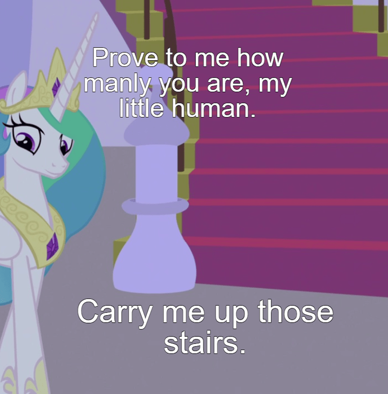princess celestia screencap the summer sun setback jackermom - 9583008768