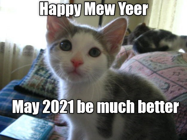 Happy New Year May 2021 be much better | cute kitten